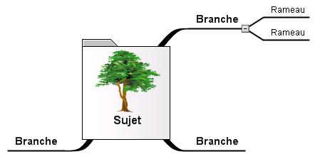 Les idées périphériques sont des rameaux des branches principales