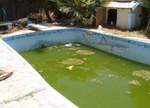 Nettoyer sa piscine, ou le calvaire des gens heureux