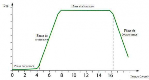 Exemple d'une courbe de croissance bacterienne